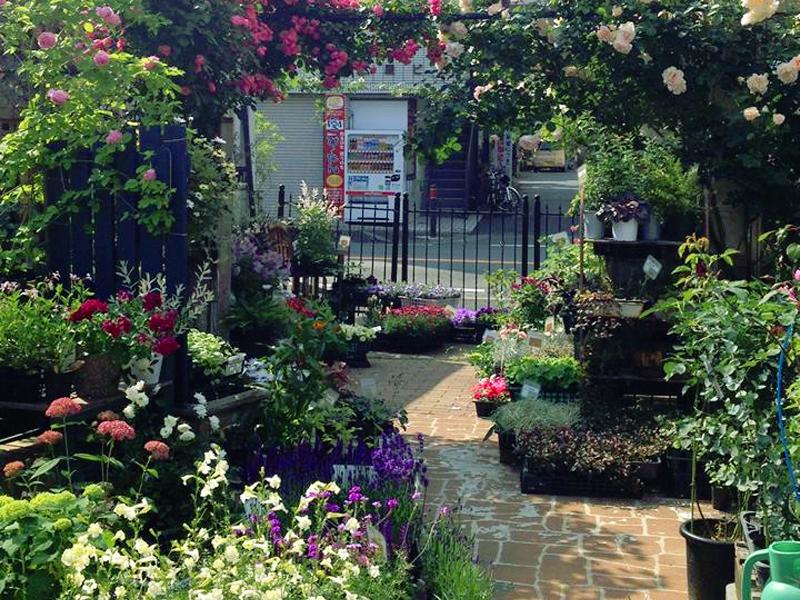 「ガーデンデザイナー」とは